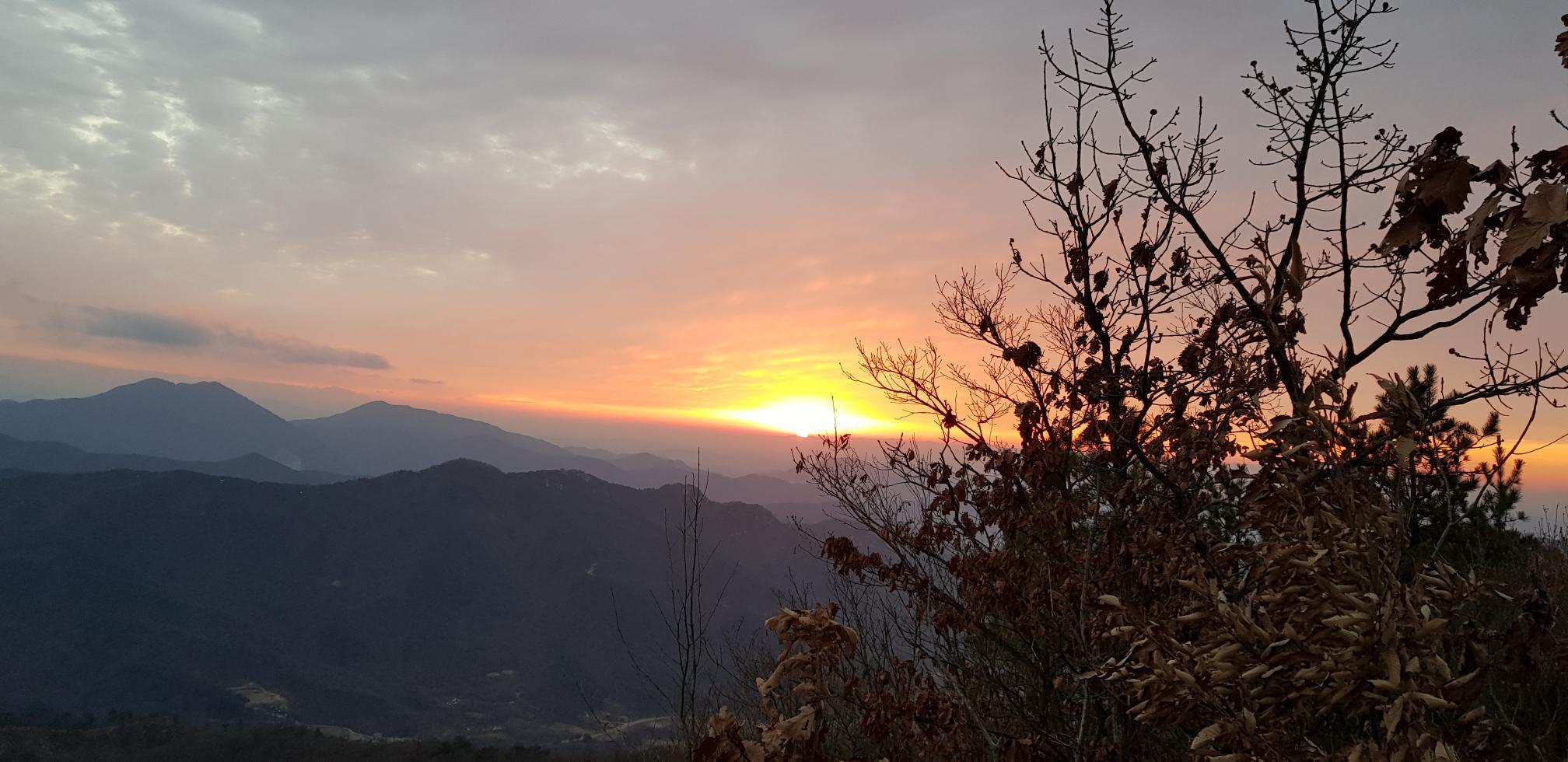 기해년(己亥年) 새해맞이